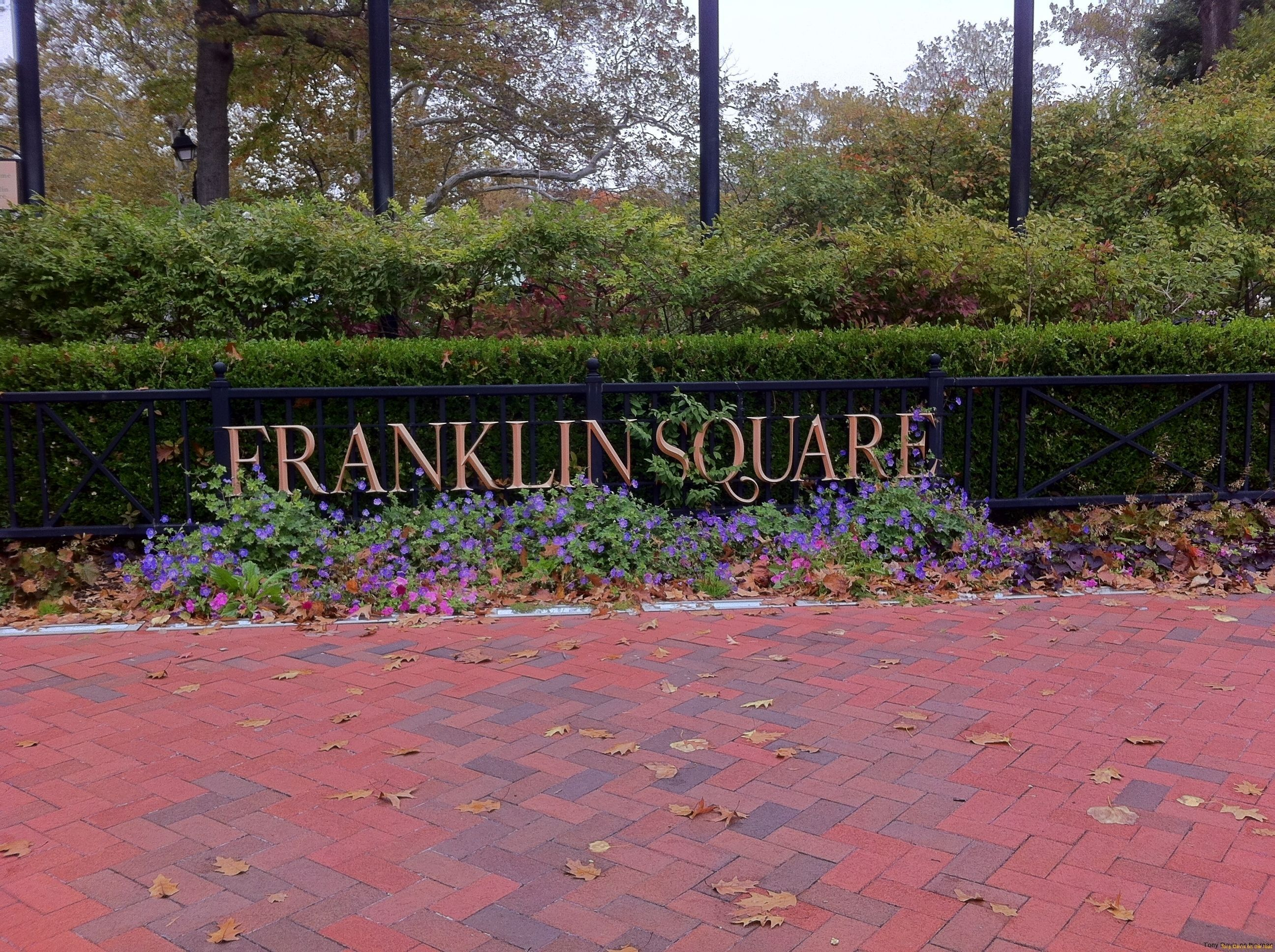 Franklyn Square